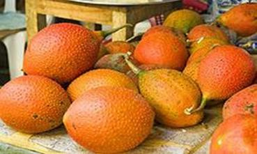 Momordica cochinchinensis, Gac fruit or Baby jack fruit, 3 seeds