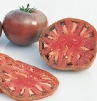 "Hungarian Tomato ""Cherokee Purple"", large fruits, organic"