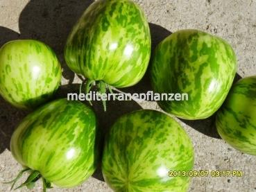 "Hungarian Tomatoe ""Green Zebra"", big fruits in green colour, organic, BIO hu-öko-01"