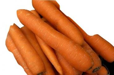 Old Hungarian farmer carrot from our farm, 500 seeds