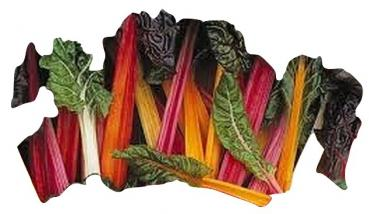 Old Hungarian Rainbow MIX chard, 50 seeds
