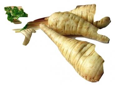 Hungarian Bio parsnip, 200 seeds from our farm