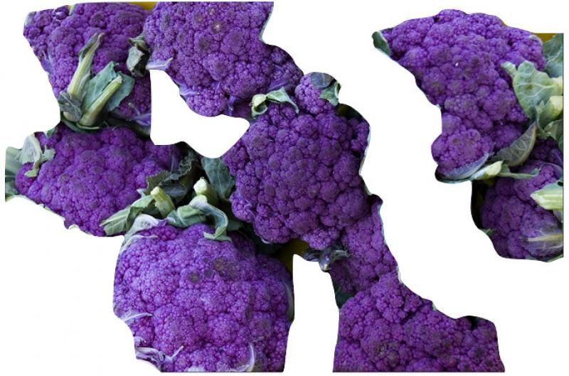 Old Hungarian purple broccoli from our farm, 100 seeds