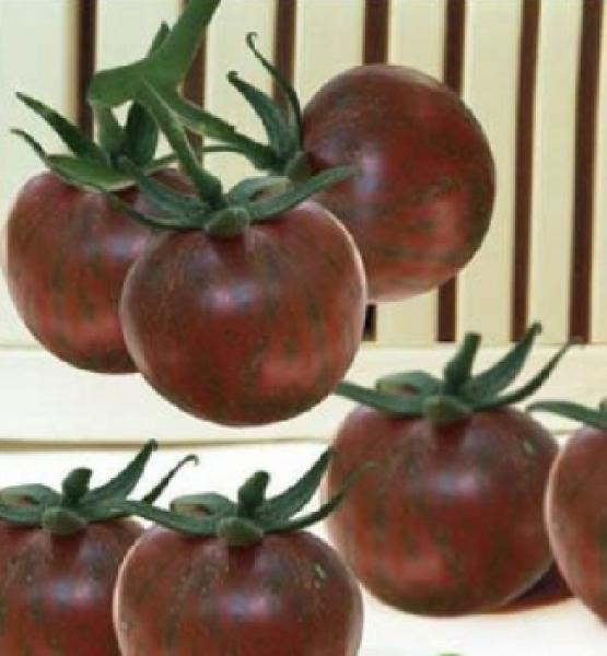 "Hungarian Tomato ""Mini Purple Cherry"", organic"