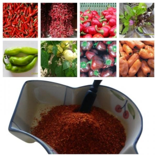 Hungarian  Historical paprika varieties: 10 different ones AND (100g=8,98€)50g spicy KALÓZ paprika powder fresh from our farm, Bio hu-öko-01