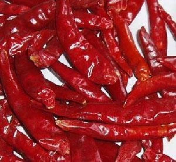Hungarian HOT red Pepper , organic, Bio hu-öko-01
